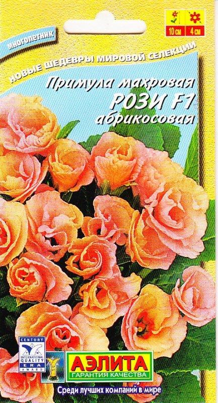 Примула махровая рози выращивание из семян фото 28
