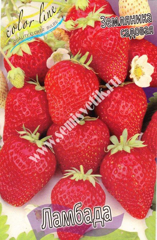 Как сохранить ягоды у клубники чтоб не